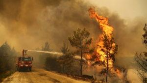 Turkey's Wildfires & Next Countries
