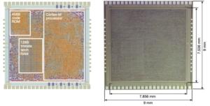 Flexible ARM Small Processor.